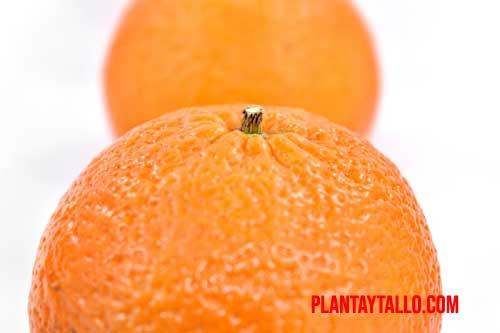 origen de la naranja