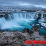 Conoce porque en Islandia no hay árboles: una historia de vikingos