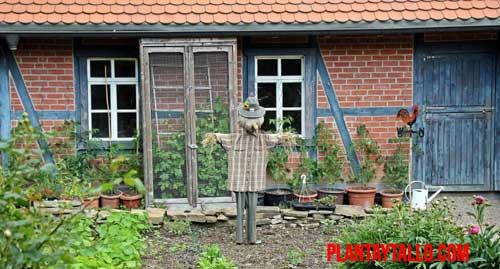 porque la jardinería es una actividad rentable