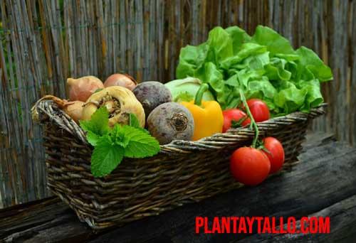 datos curiosos de las frutas y verduras