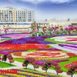 ¿Cuál es el jardín mas grande del mundo? Conoce el Dubai Miracle Garden
