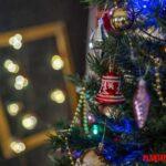 ¿Por qué el pino es utilizado para el árbol de navidad?